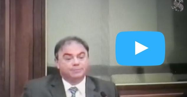 Audizione_live_Senato
