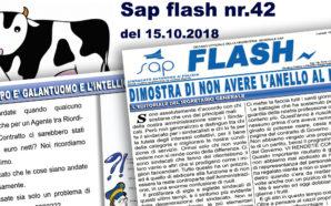 SAP FLASH NR° 42 DEL 15 OTTOBRE 2018