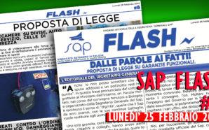 SAP FLASH NR° 08 DEL 25 FEBBRAIO 2019