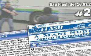 SAP FLASH NR° 29 DEL 16 LUGLIO 2018