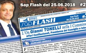 SAP FLASH NR° 26 DEL 25 GIUGNO 2018